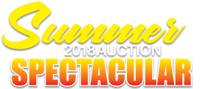 2018 Summer Spectacular Auction