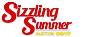 Sizzling Summer Auction 2017