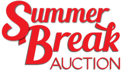 Summer Break Auction 2015