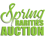 2020 Spring Rarities Auction